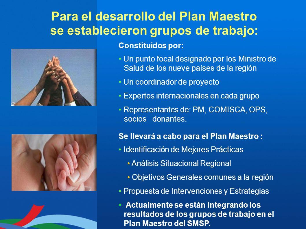 Para el desarrollo del Plan Maestro se establecieron grupos de trabajo: Constituidos por: Un punto focal designado por los Ministro de Salud de los nu