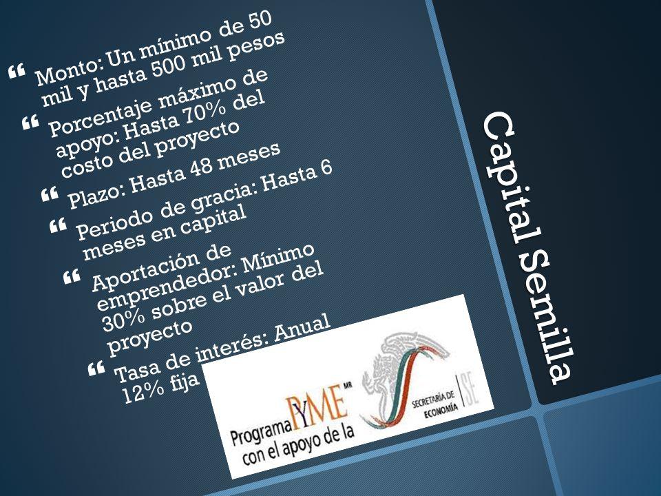 Capital Semilla Monto: Un mínimo de 50 mil y hasta 500 mil pesos Porcentaje máximo de apoyo: Hasta 70% del costo del proyecto Plazo: Hasta 48 meses Pe