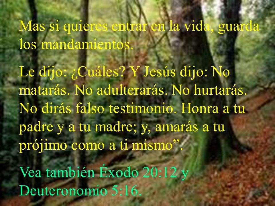 Mas si quieres entrar en la vida, guarda los mandamientos. Le dijo: ¿Cuáles? Y Jesús dijo: No matarás. No adulterarás. No hurtarás. No dirás falso tes