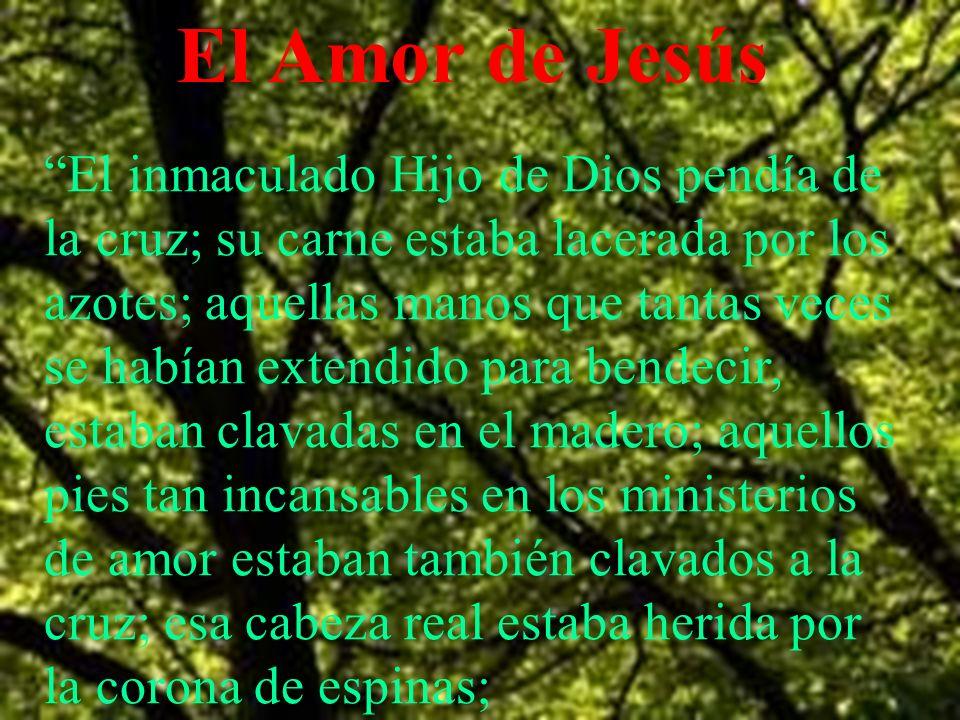 El Amor de Jesús El inmaculado Hijo de Dios pendía de la cruz; su carne estaba lacerada por los azotes; aquellas manos que tantas veces se habían exte