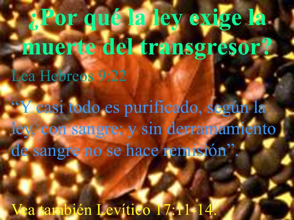 ¿Por qué la ley exige la muerte del transgresor? Lea Hebreos 9:22 Y casi todo es purificado, según la ley, con sangre; y sin derramamiento de sangre n