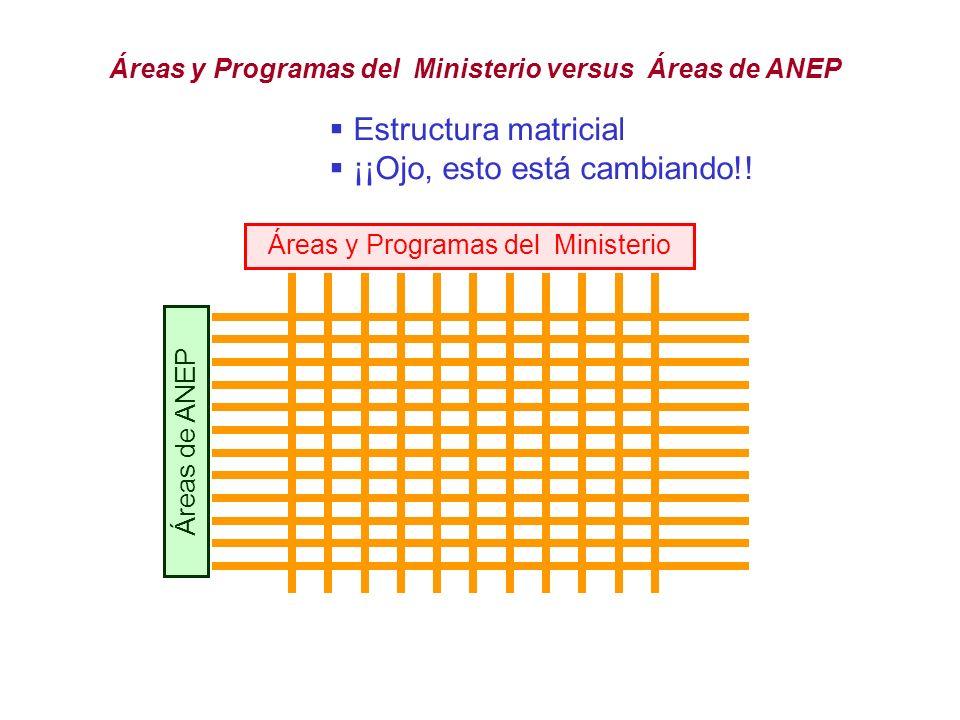 Áreas y Programas del Ministerio versus Áreas de ANEP Áreas y Programas del Ministerio Áreas de ANEP Estructura matricial ¡¡Ojo, esto está cambiando!!