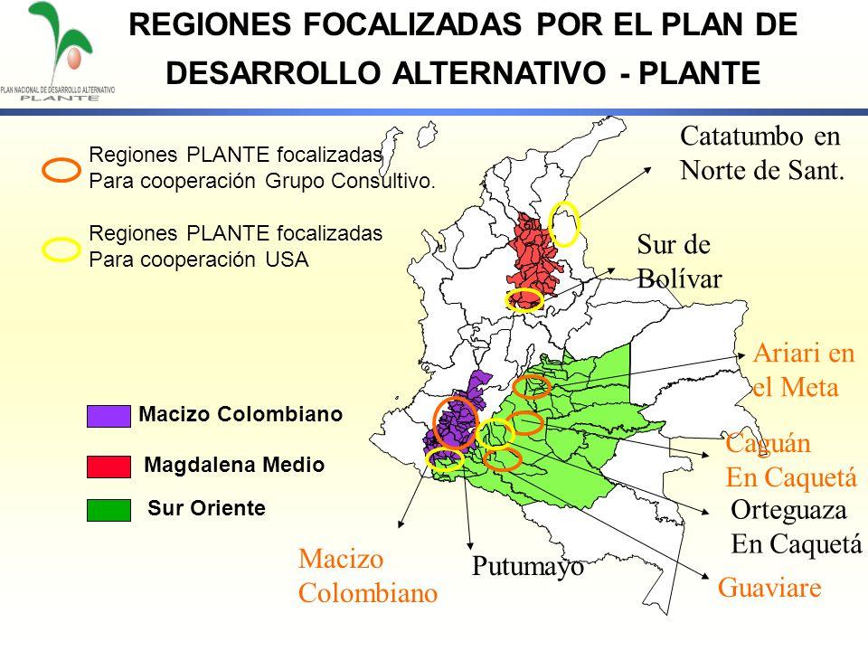 REGIONES FOCALIZADAS POR EL PLAN DE DESARROLLO ALTERNATIVO - PLANTE Macizo Colombiano Magdalena Medio Sur Oriente Sur de Bolívar Ariari en el Meta Gua