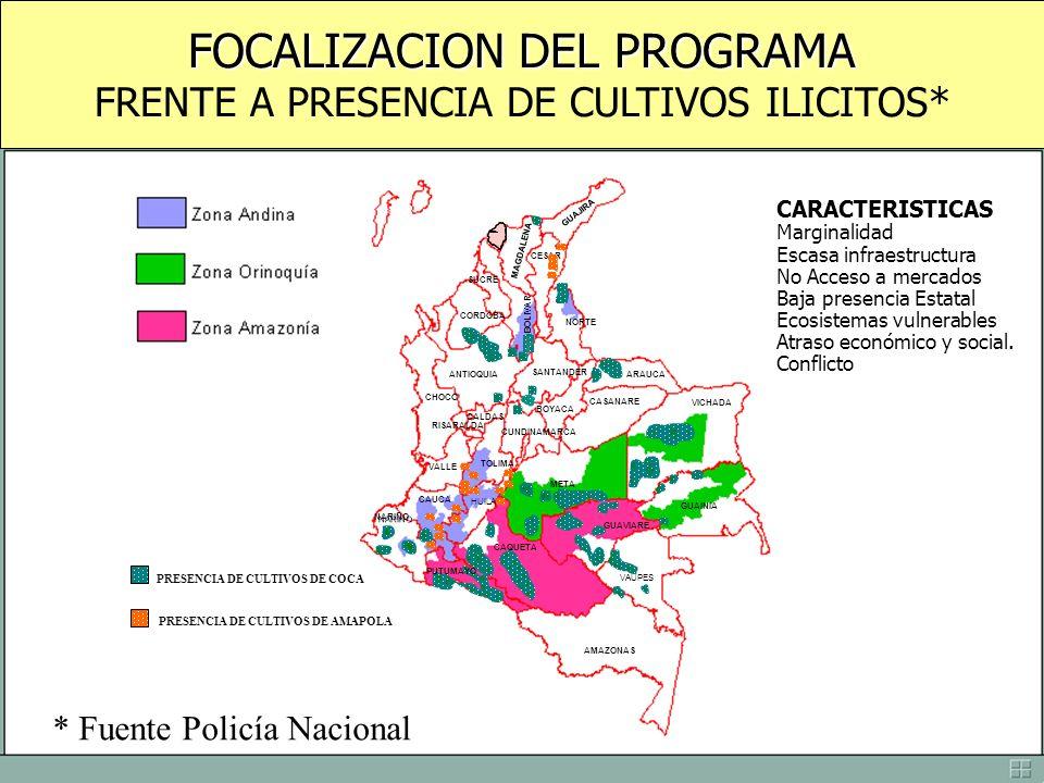 FOCALIZACION DEL PROGRAMA FRENTE A PRESENCIA DE CULTIVOS ILICITOS* CORDOBA ANTIOQUIA CAUCA NARINO CHOCO VALLE TOLIMA HUILA RISARALDA CALDAS BOLIVAR SU