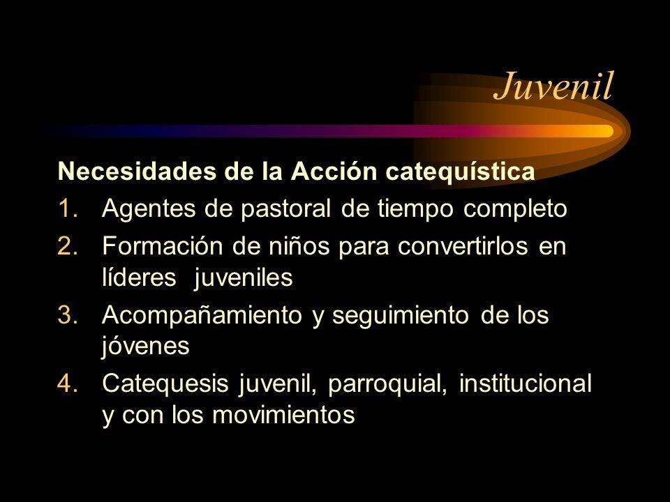 Juvenil Necesidades de la Acción catequística 1.Agentes de pastoral de tiempo completo 2.Formación de niños para convertirlos en líderes juveniles 3.A