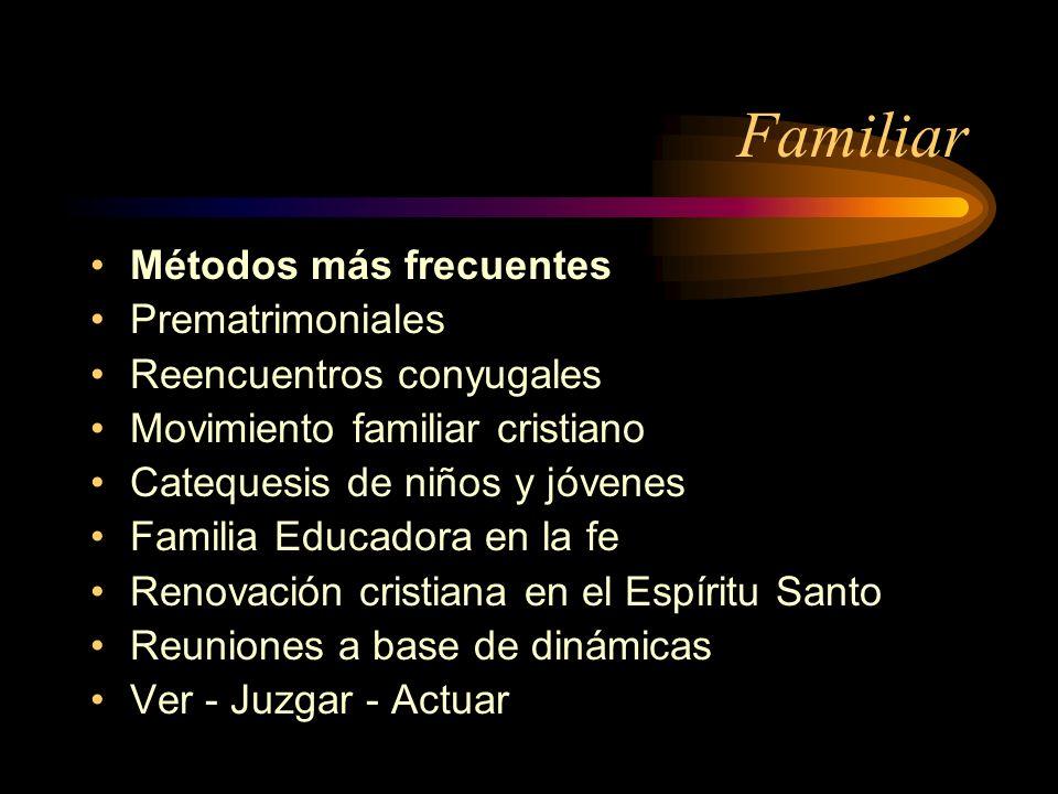 Familiar Métodos más frecuentes Prematrimoniales Reencuentros conyugales Movimiento familiar cristiano Catequesis de niños y jóvenes Familia Educadora