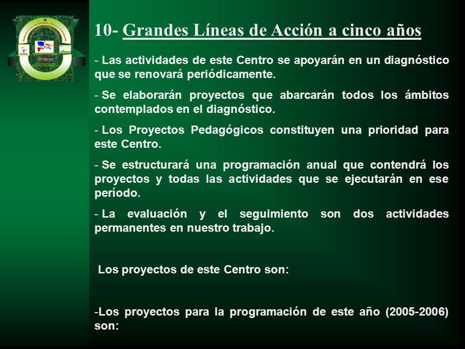 10- Grandes Líneas de Acción a cinco años - Las actividades de este Centro se apoyarán en un diagnóstico que se renovará periódicamente. - Se elaborar
