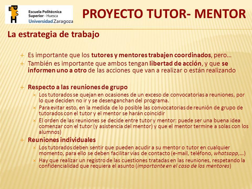 La estrategia de trabajo Es importante que los tutores y mentores trabajen coordinados, pero… También es importante que ambos tengan libertad de acció