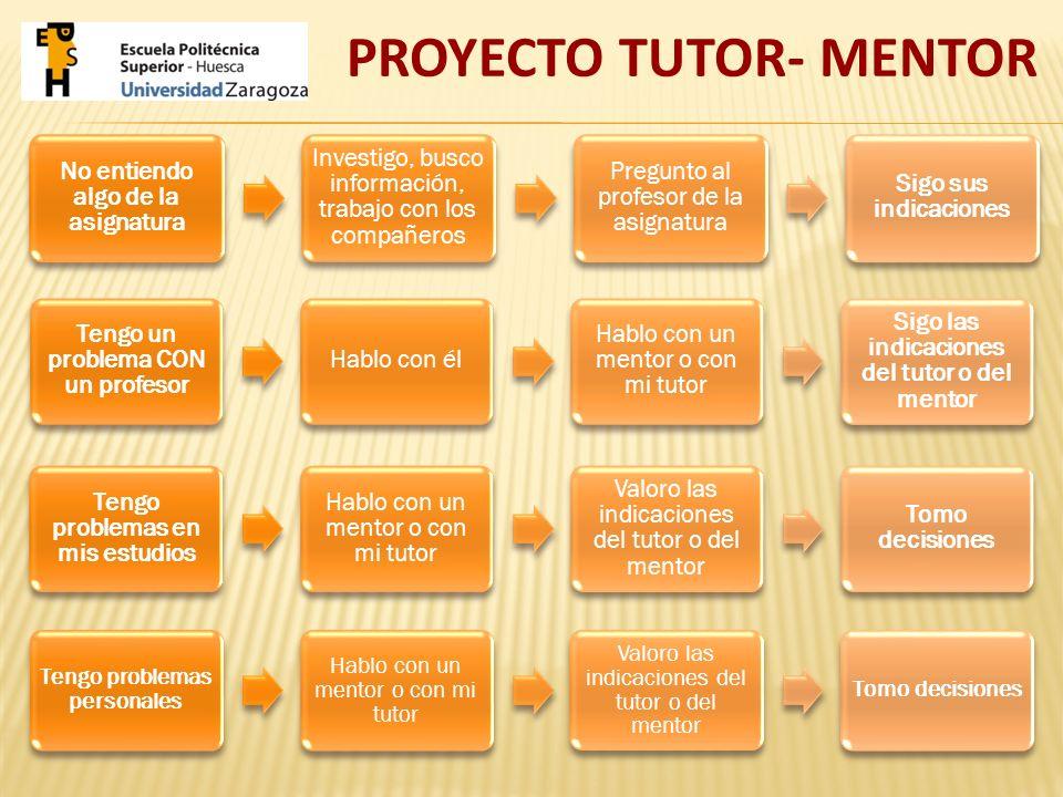 Los mentores pueden reunirse colectiva o individualmente con los estudiantes mentorizados o estar en contacto por medios electrónicos, de manera que se consiga una interacción más personal para intercambiar información o inquietudes sobre cualquier tema de índole académica, organizativa, etc.