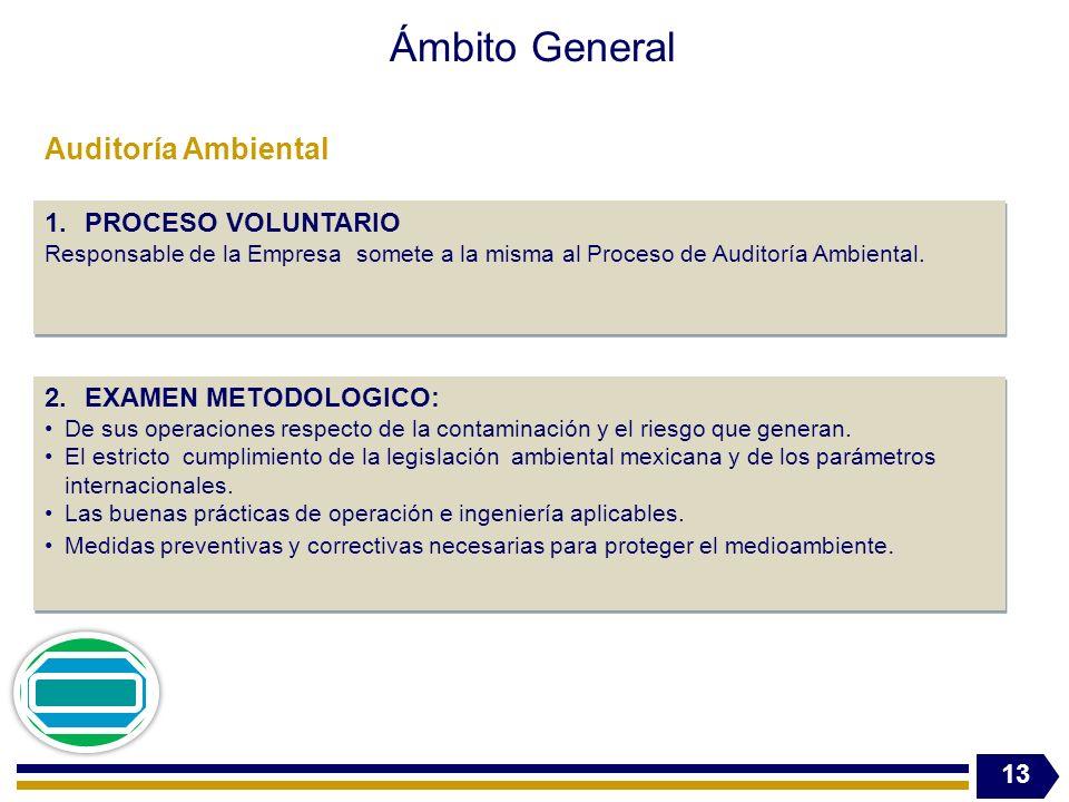 Ámbito General 13 1.PROCESO VOLUNTARIO Responsable de la Empresa somete a la misma al Proceso de Auditoría Ambiental. 1.PROCESO VOLUNTARIO Responsable