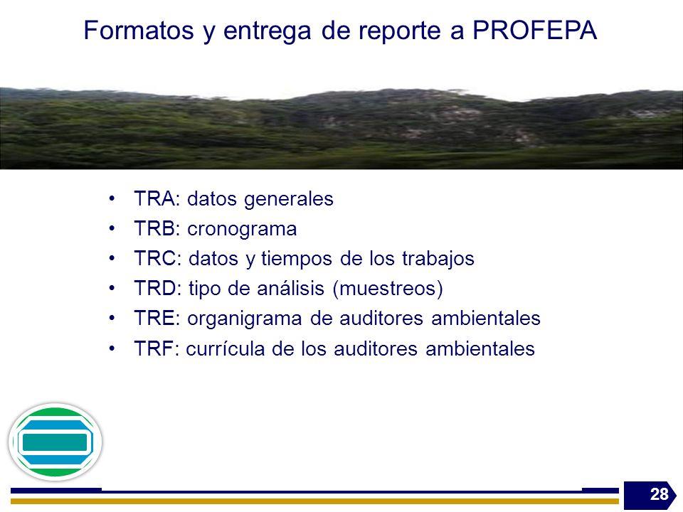 Formatos y entrega de reporte a PROFEPA TRA: datos generales TRB: cronograma TRC: datos y tiempos de los trabajos TRD: tipo de análisis (muestreos) TRE: organigrama de auditores ambientales TRF: currícula de los auditores ambientales 28