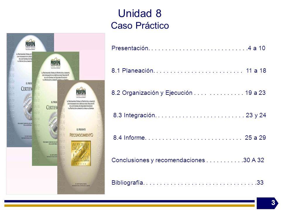 3 Presentación.............................4 a 10 8.1 Planeación.......................... 11 a 18 8.2 Organización y Ejecución.............. 19 a 23