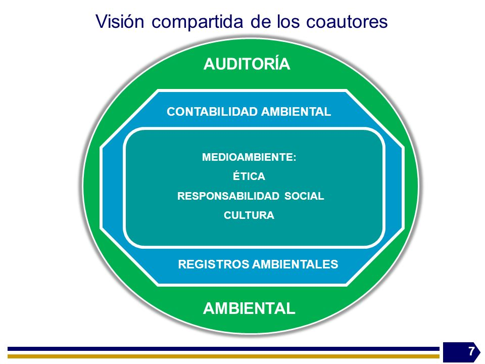 Visión compartida de los coautores 7 MEDIOAMBIENTE: ÉTICA RESPONSABILIDAD SOCIAL CULTURA CONTABILIDAD AMBIENTAL REGISTROS AMBIENTALES AUDITORÍA AMBIENTAL