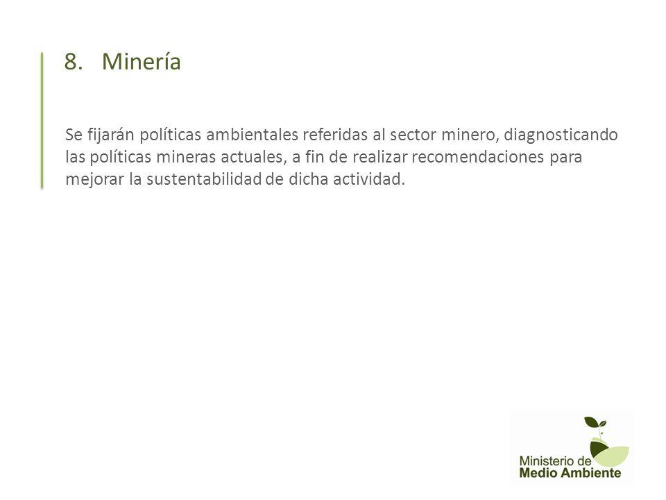 Se fijarán políticas ambientales referidas al sector minero, diagnosticando las políticas mineras actuales, a fin de realizar recomendaciones para mej
