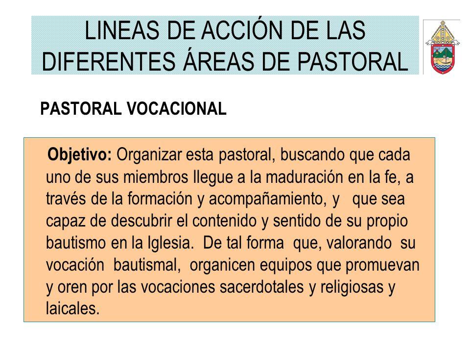 PASTORAL VOCACIONAL Objetivo: Organizar esta pastoral, buscando que cada uno de sus miembros llegue a la maduración en la fe, a través de la formación