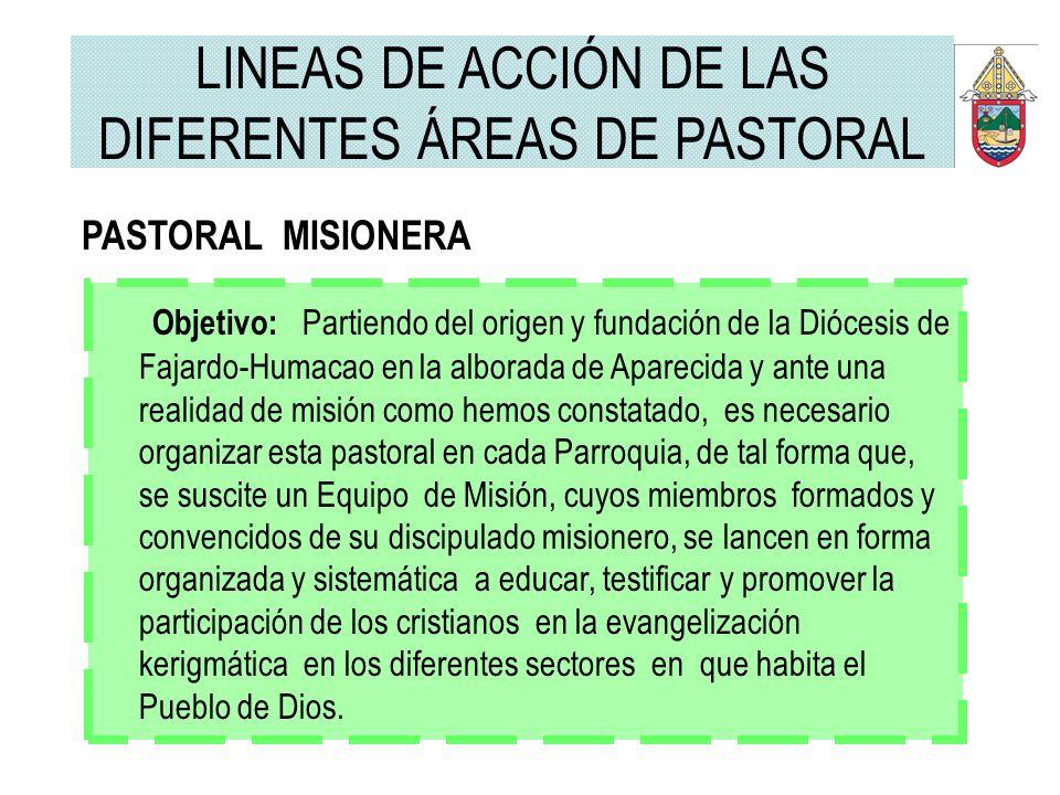 PASTORAL MISIONERA Objetivo: Partiendo del origen y fundación de la Diócesis de Fajardo-Humacao en la alborada de Aparecida y ante una realidad de mis