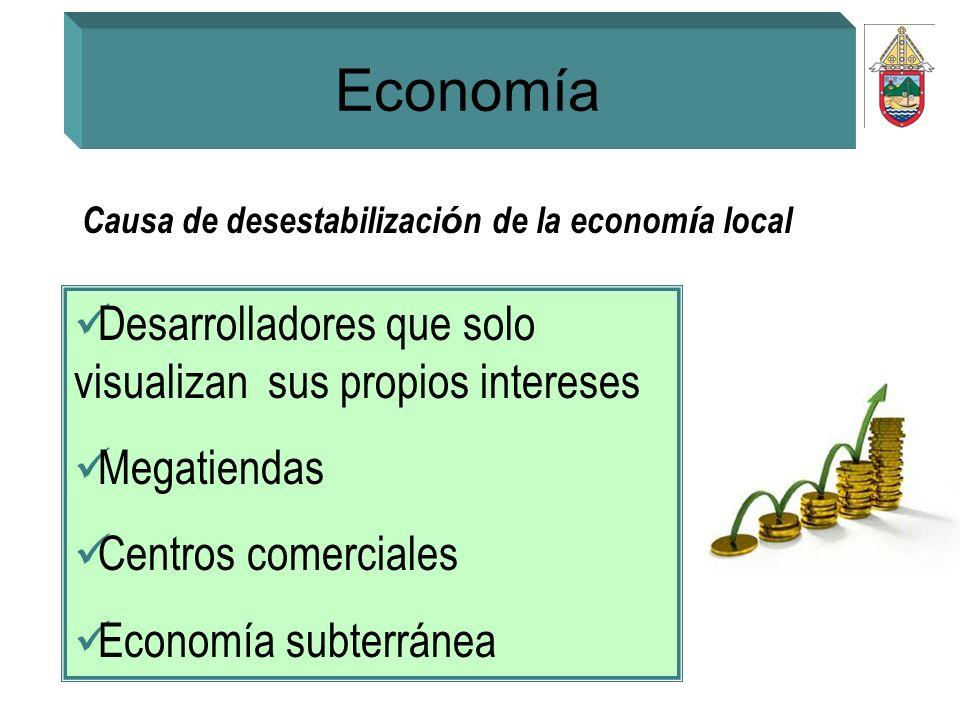 Economía Causa de desestabilizaci ó n de la econom í a local Desarrolladores que solo visualizan sus propios intereses Megatiendas Centros comerciales