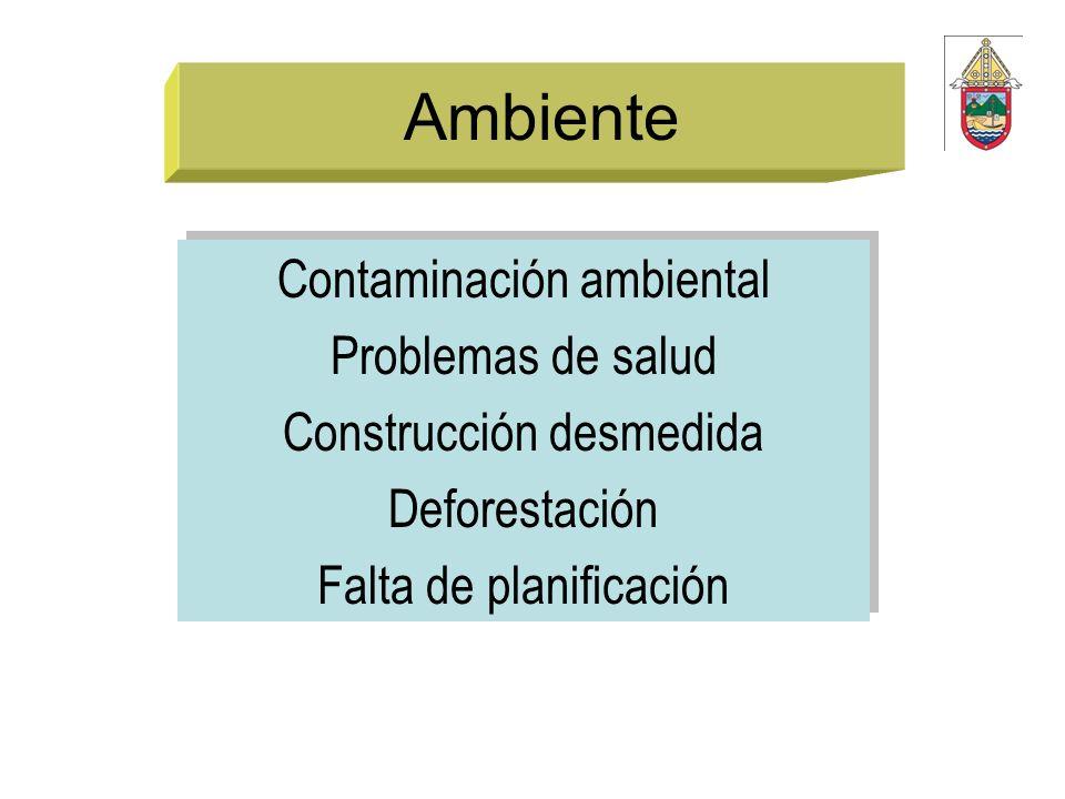 Ambiente Contaminación ambiental Problemas de salud Construcción desmedida Deforestación Falta de planificación Contaminación ambiental Problemas de s