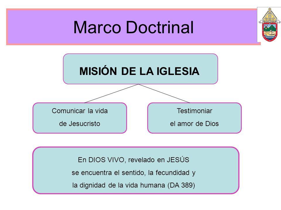 Marco Doctrinal MISIÓN DE LA IGLESIA Comunicar la vida de Jesucristo Testimoniar el amor de Dios En DIOS VIVO, revelado en JESÚS se encuentra el senti