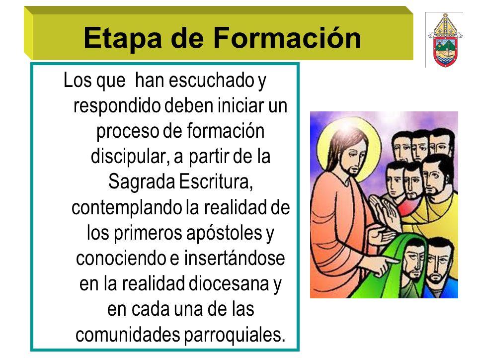Etapa de Formación Los que han escuchado y respondido deben iniciar un proceso de formación discipular, a partir de la Sagrada Escritura, contemplando