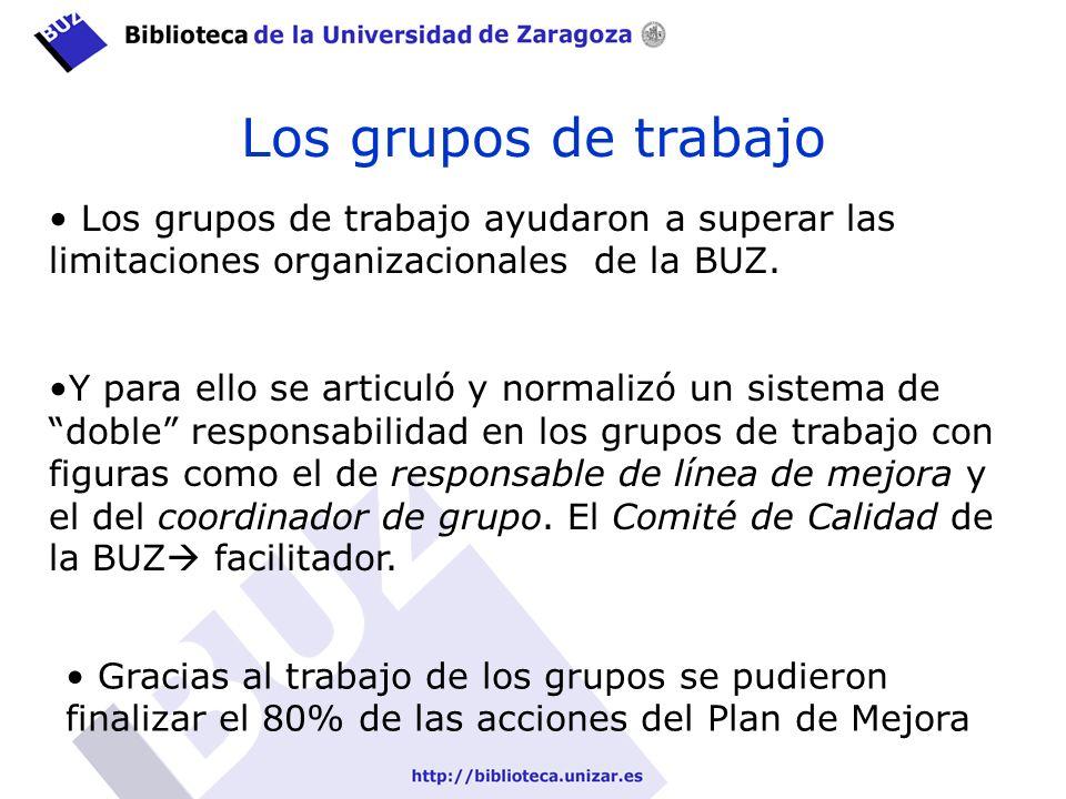 Los grupos de trabajo Los grupos de trabajo ayudaron a superar las limitaciones organizacionales de la BUZ.