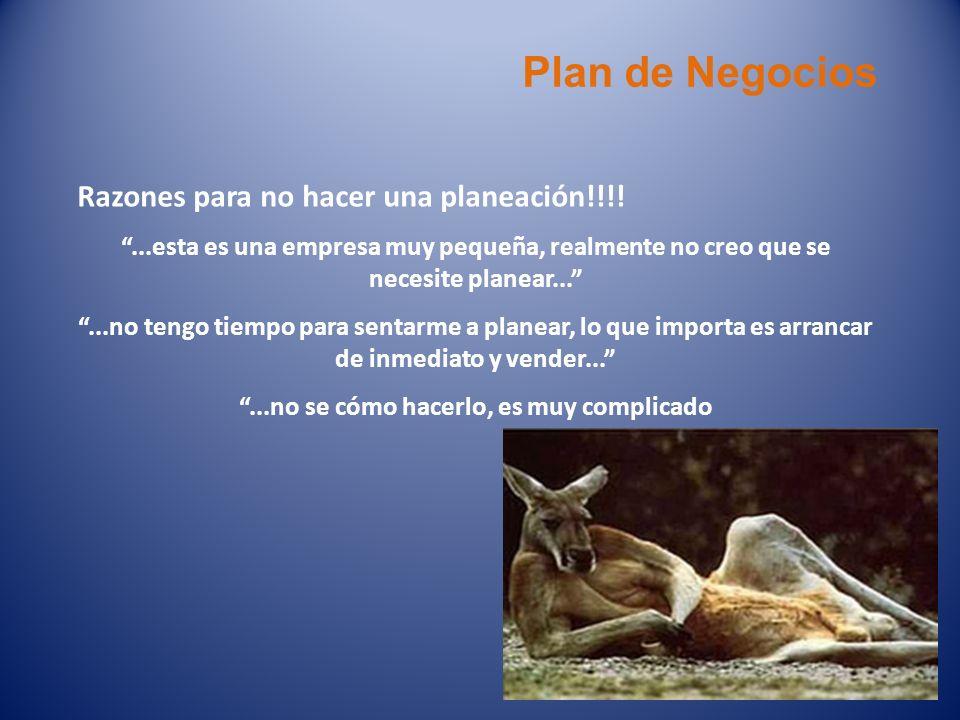 Plan de Negocios Razones para no hacer una planeación!!!!...esta es una empresa muy pequeña, realmente no creo que se necesite planear......no tengo t