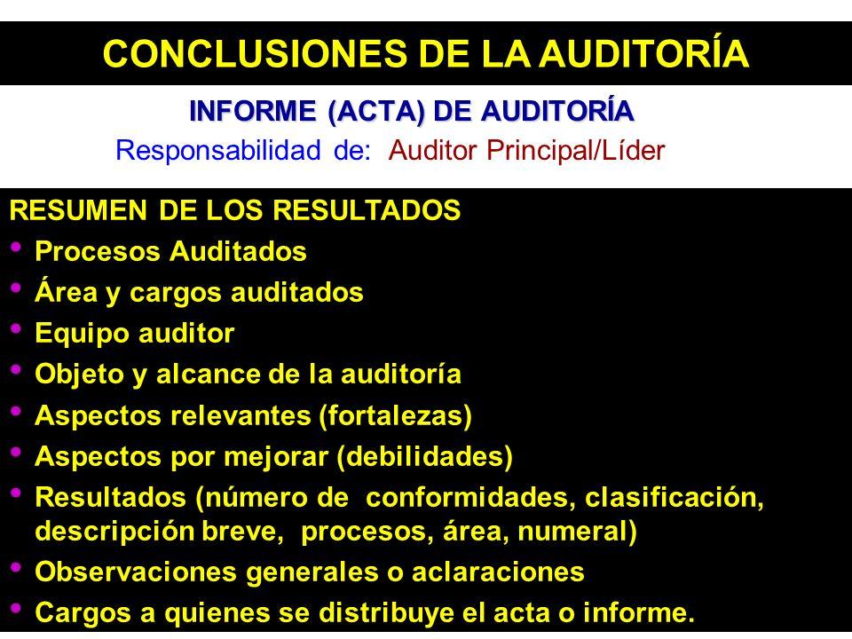 RESUMEN DE LOS RESULTADOS Procesos Auditados Área y cargos auditados Equipo auditor Objeto y alcance de la auditoría Aspectos relevantes (fortalezas)