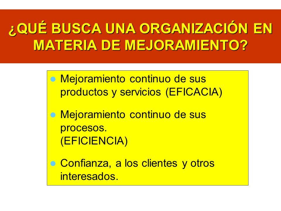¿QUÉ BUSCA UNA ORGANIZACIÓN EN MATERIA DE MEJORAMIENTO? Mejoramiento continuo de sus productos y servicios (EFICACIA) Mejoramiento continuo de sus pro