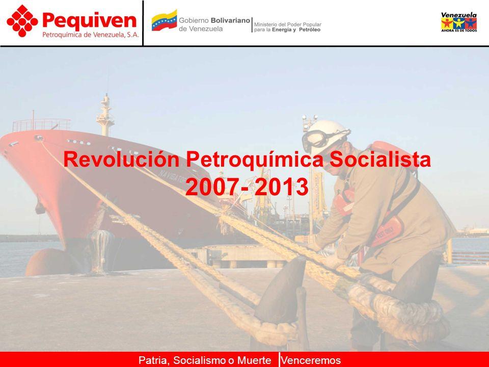 Patria, Socialismo o Muerte Venceremos Revolución Petroquímica Socialista 2007- 2013