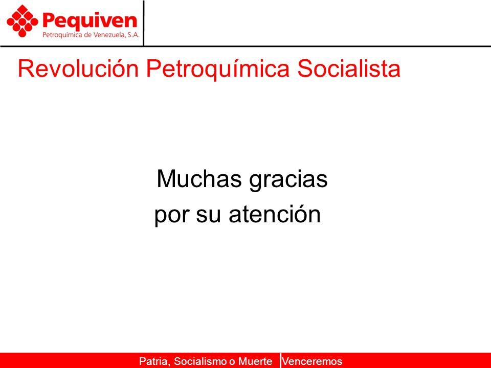 Patria, Socialismo o Muerte Venceremos Revolución Petroquímica Socialista Muchas gracias por su atención