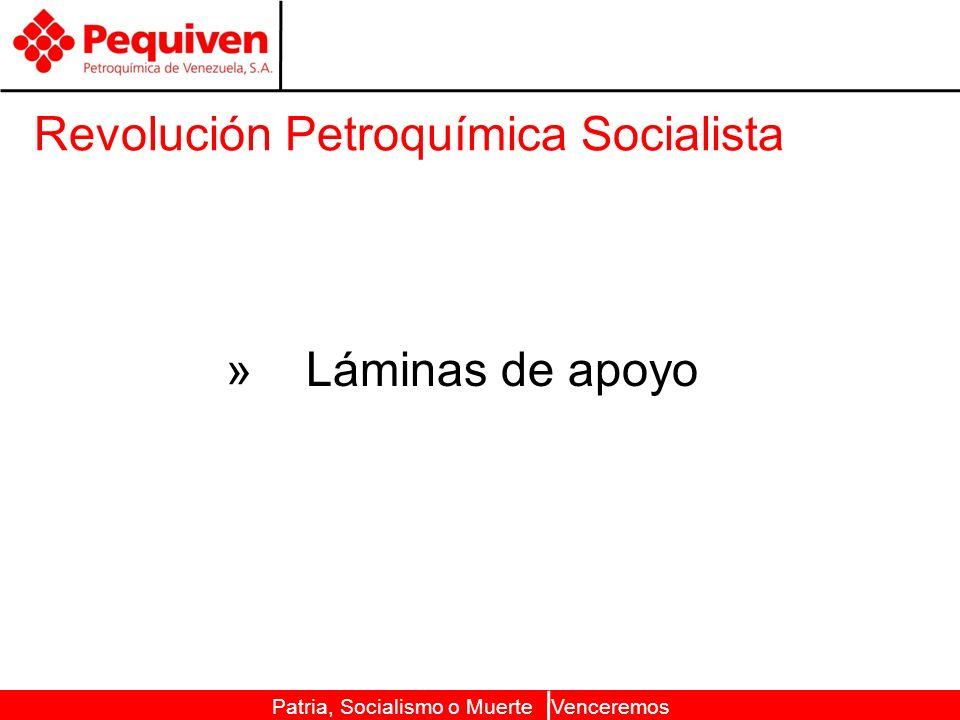 Patria, Socialismo o Muerte Venceremos Revolución Petroquímica Socialista » Láminas de apoyo