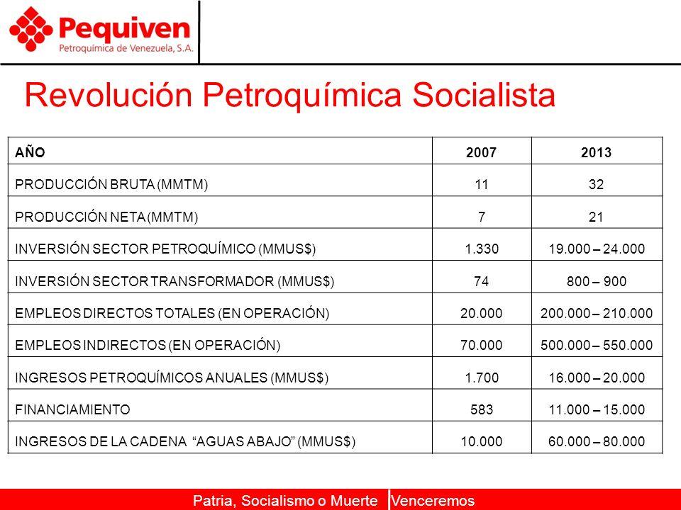 Patria, Socialismo o Muerte Venceremos Revolución Petroquímica Socialista AÑO20072013 PRODUCCIÓN BRUTA (MMTM)1132 PRODUCCIÓN NETA (MMTM)721 INVERSIÓN SECTOR PETROQUÍMICO (MMUS$)1.33019.000 – 24.000 INVERSIÓN SECTOR TRANSFORMADOR (MMUS$)74800 – 900 EMPLEOS DIRECTOS TOTALES (EN OPERACIÓN)20.000200.000 – 210.000 EMPLEOS INDIRECTOS (EN OPERACIÓN)70.000500.000 – 550.000 INGRESOS PETROQUÍMICOS ANUALES (MMUS$)1.70016.000 – 20.000 FINANCIAMIENTO58311.000 – 15.000 INGRESOS DE LA CADENA AGUAS ABAJO (MMUS$)10.00060.000 – 80.000