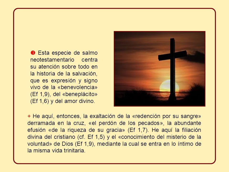 Esta especie de salmo neotestamentario centra su atención sobre todo en la historia de la salvación, que es expresión y signo vivo de la «benevolencia» (Ef 1,9), del «beneplácito» (Ef 1,6) y del amor divino.