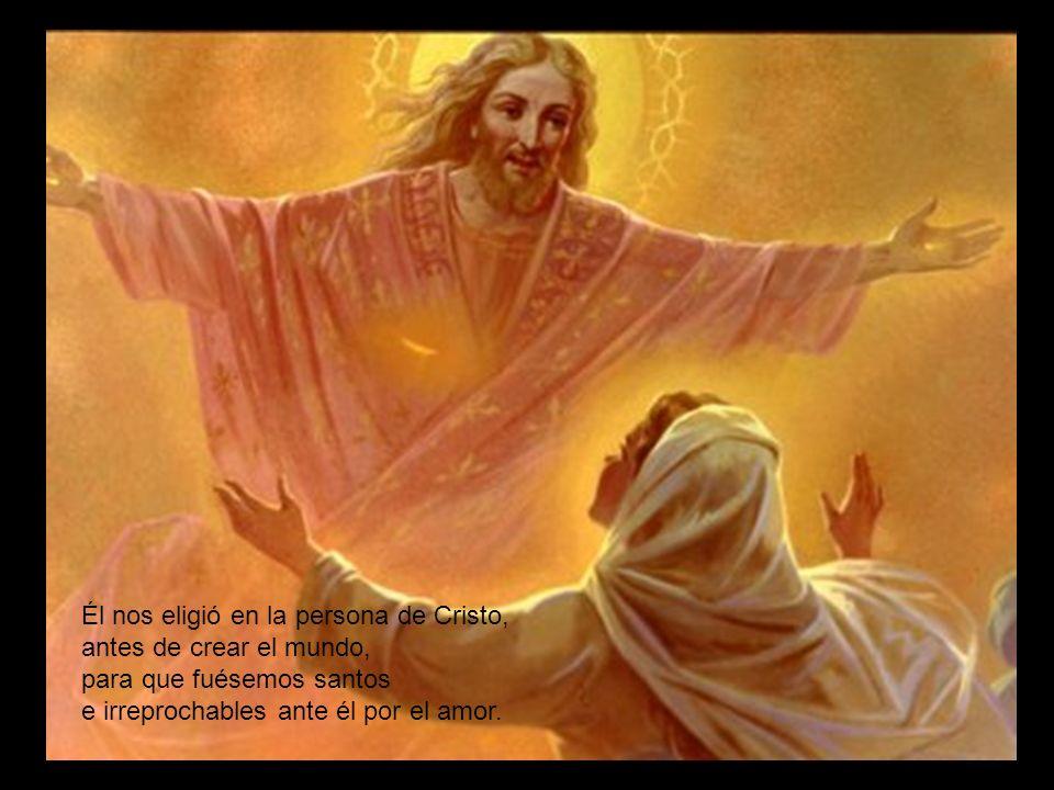 Él nos eligió en la persona de Cristo, antes de crear el mundo, para que fuésemos santos e irreprochables ante él por el amor.