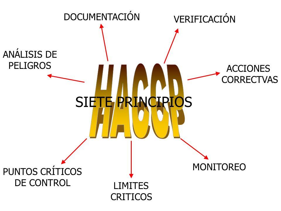ACCIONES CORRECTVAS MONITOREO LIMITES CRITICOS PUNTOS CRÍTICOS DE CONTROL VERIFICACIÓN ANÁLISIS DE PELIGROS DOCUMENTACIÓN SIETE PRINCIPIOS