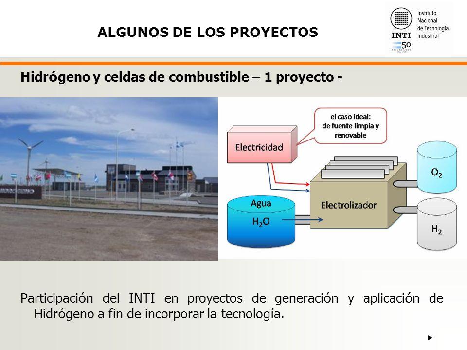 Participaci ó n del INTI en proyectos de generaci ó n y aplicaci ó n de Hidr ó geno a fin de incorporar la tecnolog í a.