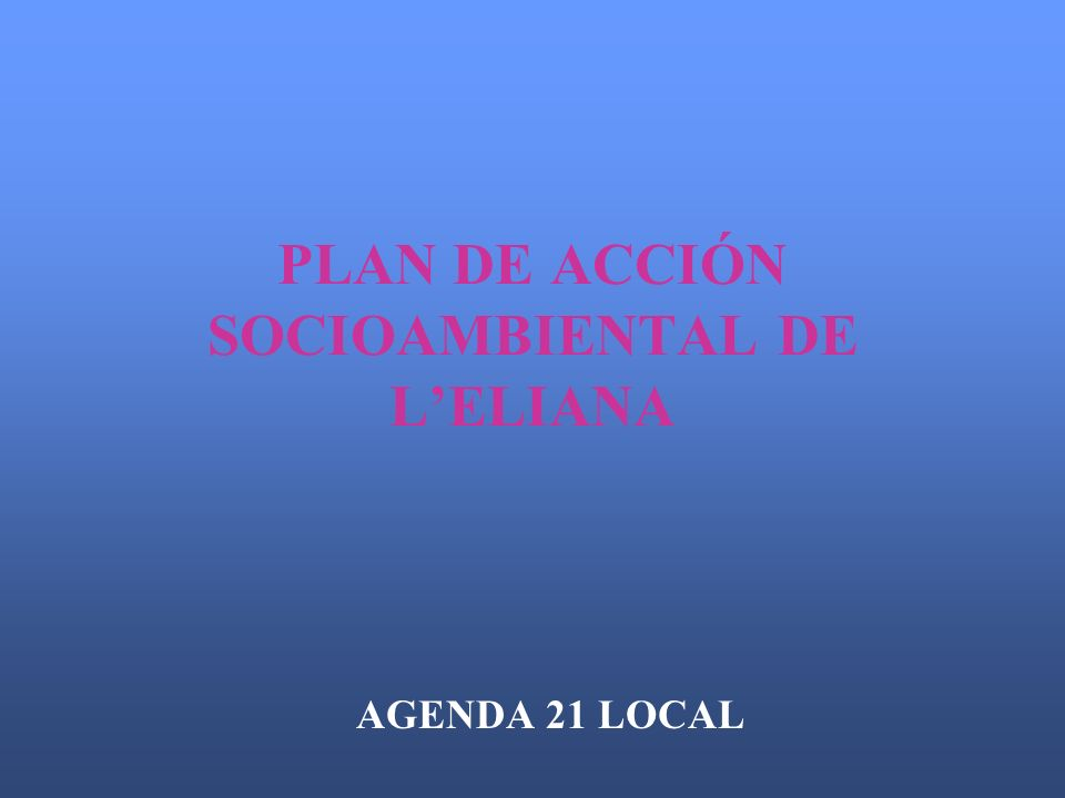 PLAN DE ACCIÓN SOCIOAMBIENTAL DE LELIANA AGENDA 21 LOCAL