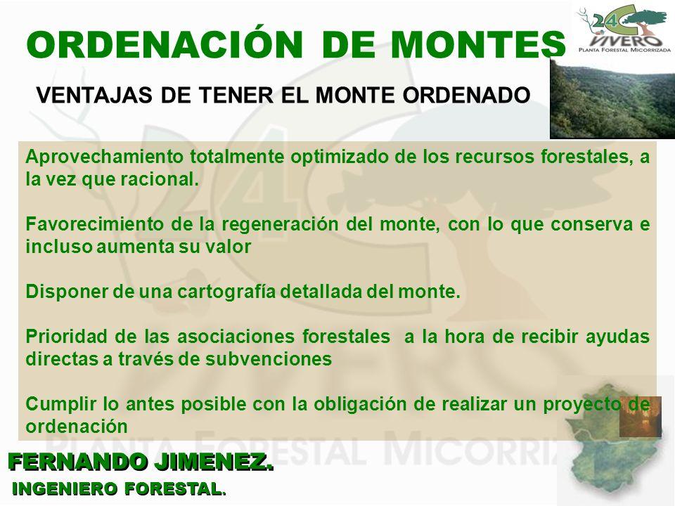 FERNANDO JIMENEZ. INGENIERO FORESTAL. ORDENACIÓN DE MONTES Aprovechamiento totalmente optimizado de los recursos forestales, a la vez que racional. Fa