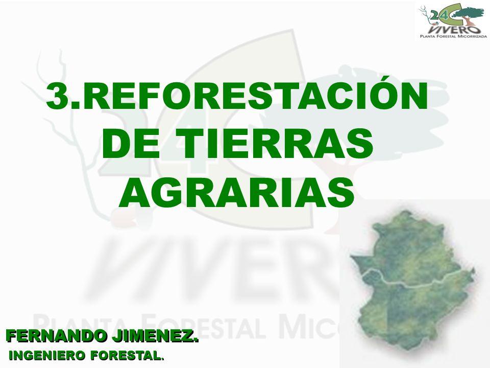 FERNANDO JIMENEZ. INGENIERO FORESTAL. 3.REFORESTACIÓN DE TIERRAS AGRARIAS