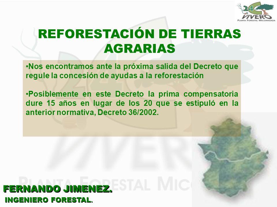 FERNANDO JIMENEZ. INGENIERO FORESTAL. REFORESTACIÓN DE TIERRAS AGRARIAS Nos encontramos ante la próxima salida del Decreto que regule la concesión de