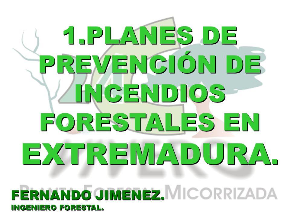 1.PLANES DE PREVENCIÓN DE INCENDIOS FORESTALES EN EXTREMADURA. FERNANDO JIMENEZ. INGENIERO FORESTAL. FERNANDO JIMENEZ. INGENIERO FORESTAL.