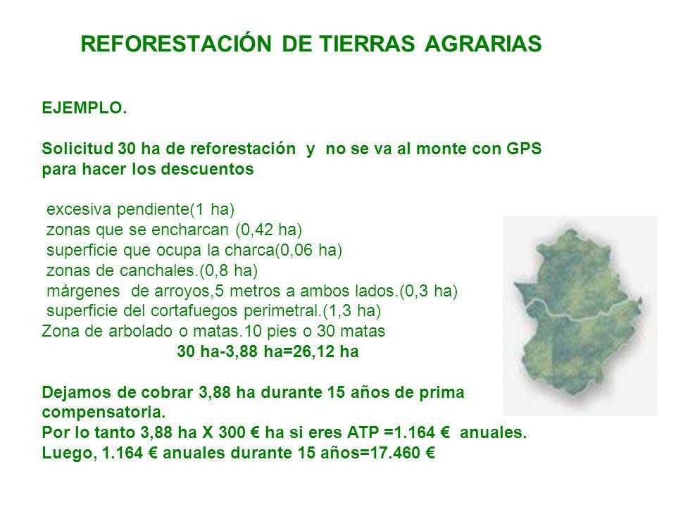 REFORESTACIÓN DE TIERRAS AGRARIAS EJEMPLO. Solicitud 30 ha de reforestación y no se va al monte con GPS para hacer los descuentos excesiva pendiente(1