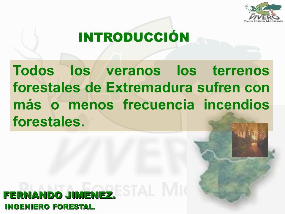 FERNANDO JIMENEZ. INGENIERO FORESTAL. INTRODUCCIÓN Todos los veranos los terrenos forestales de Extremadura sufren con más o menos frecuencia incendio