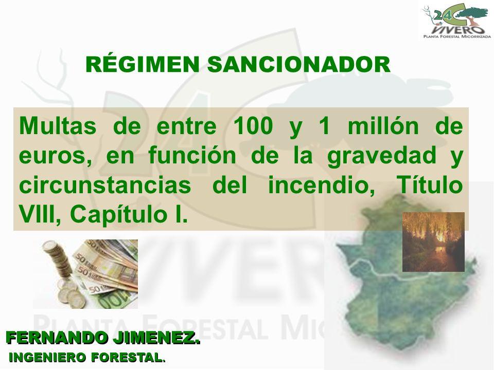FERNANDO JIMENEZ. INGENIERO FORESTAL. RÉGIMEN SANCIONADOR Multas de entre 100 y 1 millón de euros, en función de la gravedad y circunstancias del ince