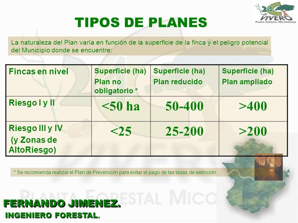 FERNANDO JIMENEZ. INGENIERO FORESTAL. TIPOS DE PLANES La naturaleza del Plan varía en función de la superficie de la finca y el peligro potencial del
