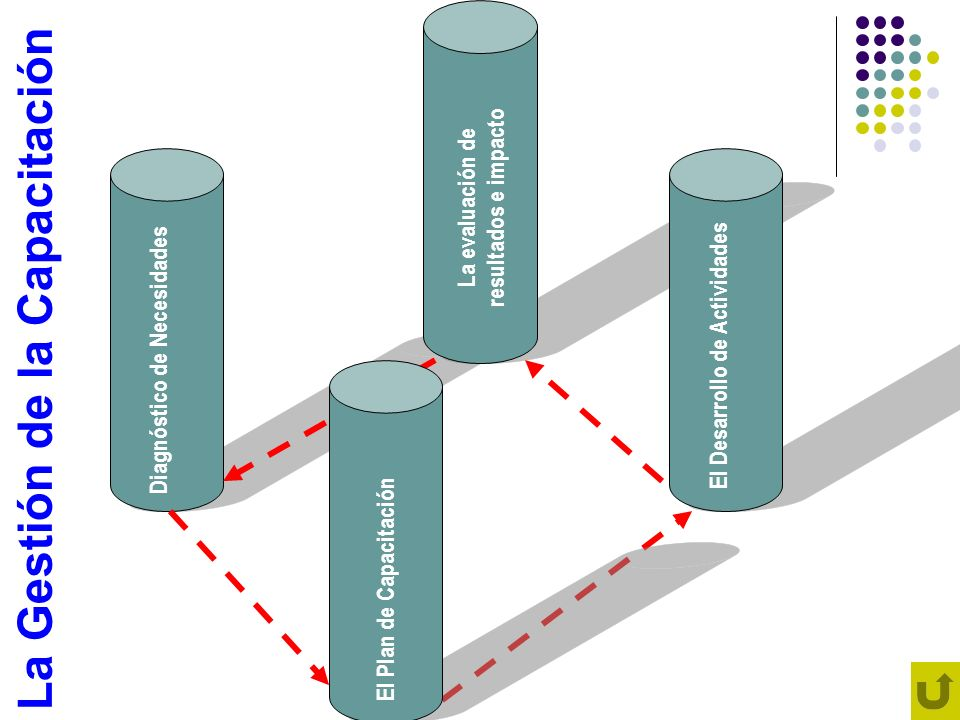 Diagnóstico de Necesidades La evaluación de resultados e impacto El Desarrollo de Actividades El Plan de Capacitación La Gestión de la Capacitación
