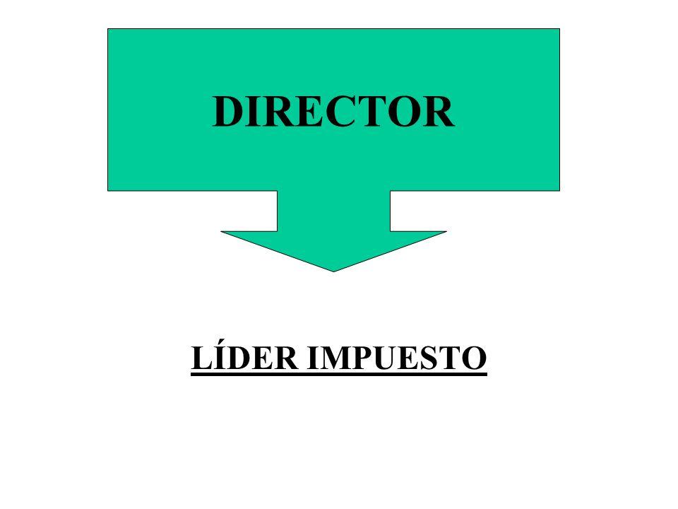 LÍDER IMPUESTO DIRECTOR