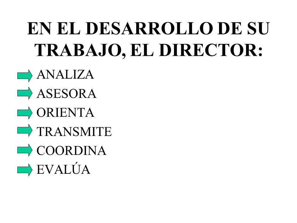 EN EL DESARROLLO DE SU TRABAJO, EL DIRECTOR: ANALIZA ASESORA ORIENTA TRANSMITE COORDINA EVALÚA