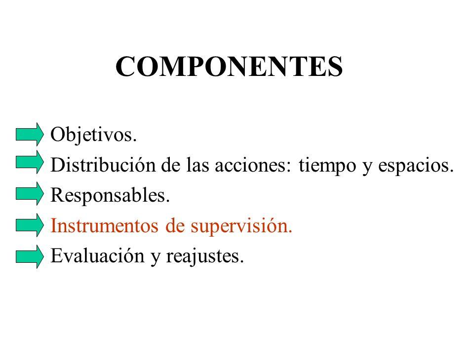 COMPONENTES Objetivos. Distribución de las acciones: tiempo y espacios. Responsables. Instrumentos de supervisión. Evaluación y reajustes.