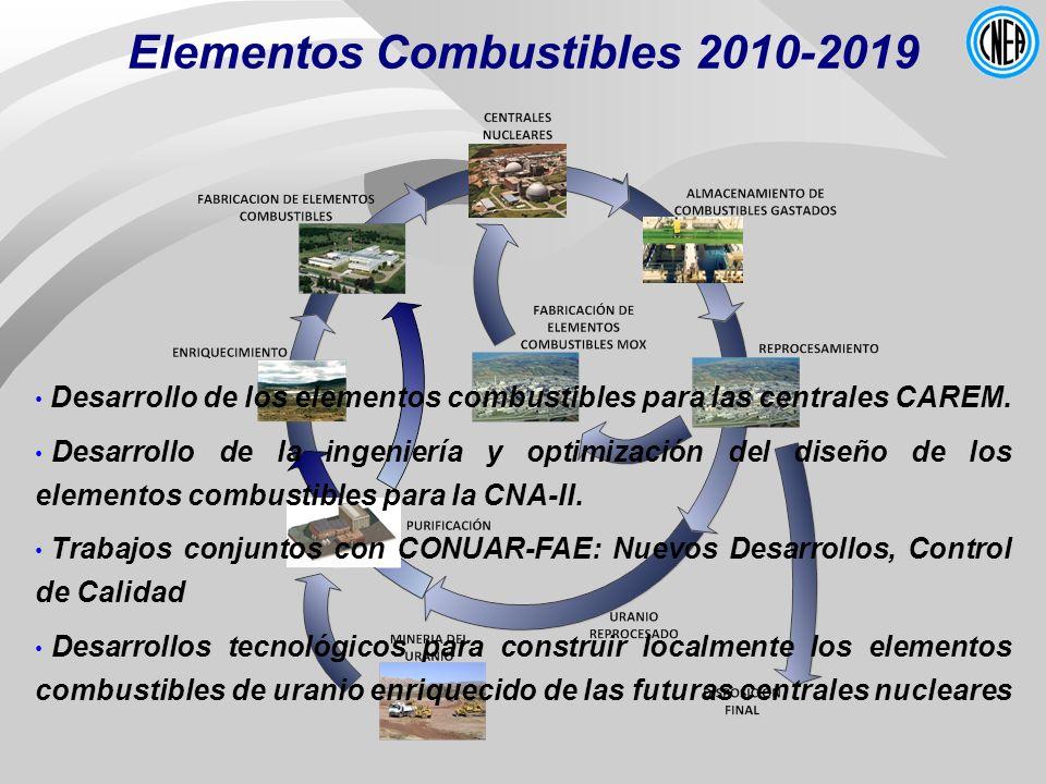 Elementos Combustibles 2010-2019 Desarrollo de los elementos combustibles para las centrales CAREM. Desarrollo de la ingeniería y optimización del dis